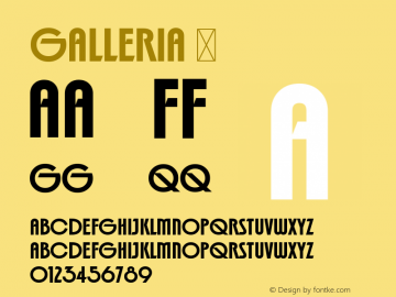 ☞Galleria Version 2.000;com.myfonts.easy.device.galleria.regular.wfkit2.version.3W2J图片样张