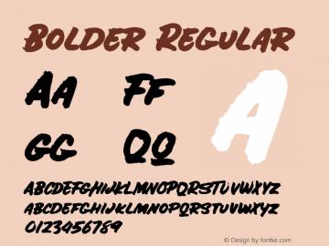 Bolder Regular Version 1.000;PS 001.000;hotconv 1.0.88;makeotf.lib2.5.64775 Font Sample