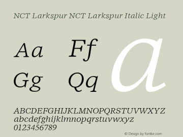NCT Larkspur NCT Larkspur It Lt Version 1.000;PS 001.000;hotconv 1.0.88;makeotf.lib2.5.64775图片样张
