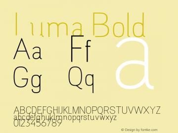 Luma Bold Version 1.000;PS 001.000;hotconv 1.0.88;makeotf.lib2.5.64775图片样张