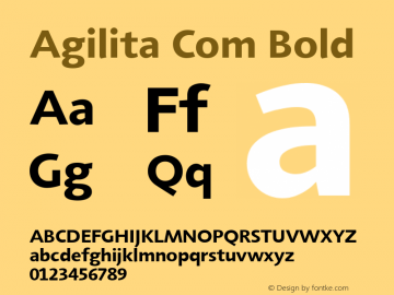 Agilita Com Bold Version 1.02图片样张