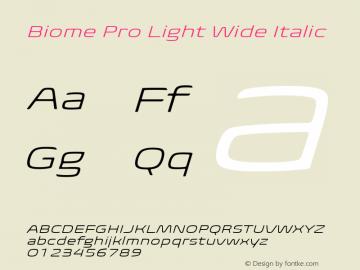 BiomePro-LightWideIt Version 1.000图片样张
