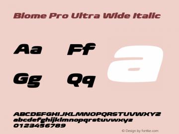 BiomePro-UltraWideIt Version 1.000图片样张