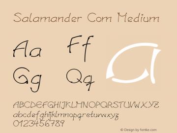 Linotype Salamander Com Medium Version 1.30图片样张