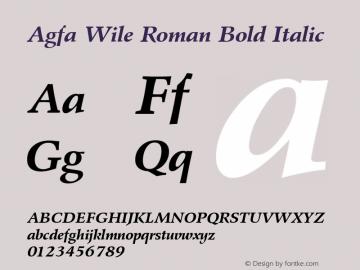 Agfa Wile Roman Bold Italic Version 1.0 9/29/98图片样张