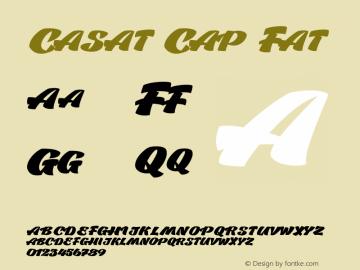 CasatCapFat Version 1.000图片样张