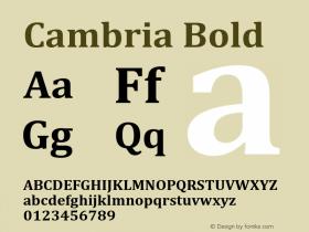 Cambria Bold Version 2.00图片样张
