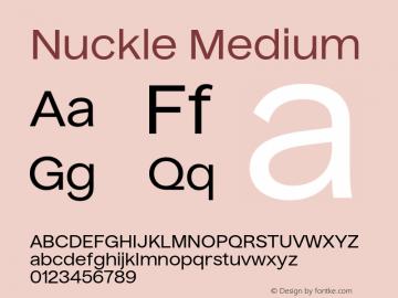 Nuckle Medium Version 1.032;PS 1.32;hotconv 1.0.88;makeotf.lib2.5.647800图片样张