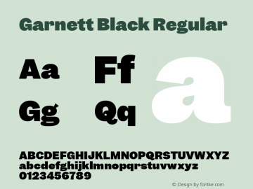 Garnett Black Regular Version 1.000;PS 1.000;hotconv 16.6.51;makeotf.lib2.5.65220图片样张
