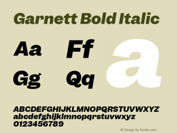 Garnett Bold Italic Version 1.000;PS 1.000;hotconv 16.6.51;makeotf.lib2.5.65220图片样张