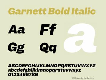 Garnett Bold Italic Version 1.000;PS 1.000;hotconv 16.6.51;makeotf.lib2.5.65220图片样张