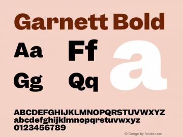 Garnett Bold Version 1.000;PS 1.000;hotconv 16.6.51;makeotf.lib2.5.65220图片样张