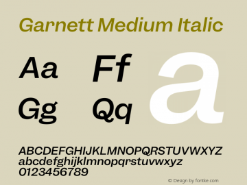 Garnett Medium Italic Version 1.000;PS 1.000;hotconv 16.6.51;makeotf.lib2.5.65220图片样张