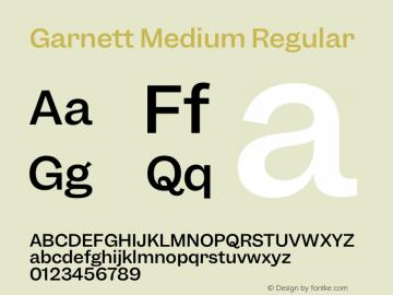 Garnett Medium Regular Version 1.000;PS 1.000;hotconv 16.6.51;makeotf.lib2.5.65220图片样张