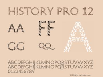HistoryPro-Twelve Version 1.0; 2013图片样张