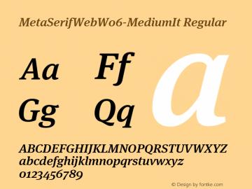 MetaSerifWeb W06 MediumItalic Version 7.504图片样张