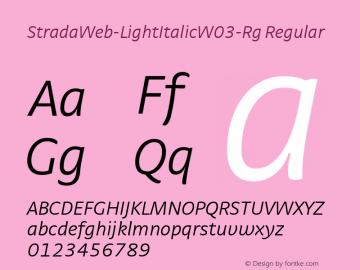 StradaWeb-LightItalic W03 Rg Version 7.504图片样张