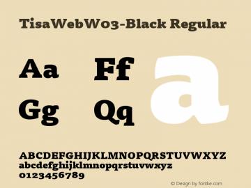 TisaWeb W03 Black Version 7.504图片样张