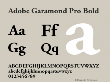 AGaramondPro-Bold OTF 1.007;PS 001.000;Core 1.0.30;makeotf.lib1.4.1030图片样张