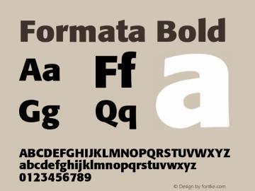 Formata-Bold OTF 1.0;PS 001.003;Core 1.0.22图片样张
