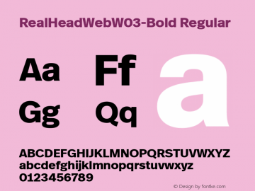 Real Head Web W03 Bold Version 7.504图片样张