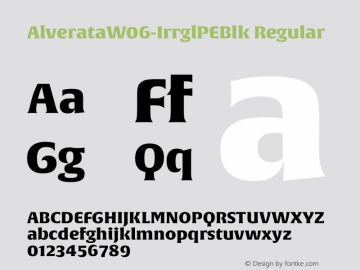 Alverata W06 Irrgl PE Blk Version 1.1图片样张