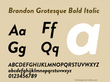 Brandon Grotesque Font Family|Brandon Grotesque-Uncategorized