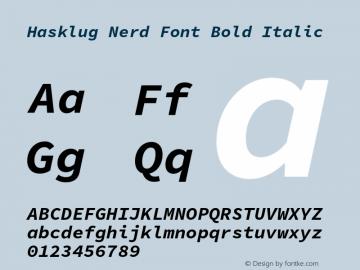 Hasklug Bold Italic Nerd Font Complete Version 1.050;PS 1.0;hotconv 16.6.51;makeotf.lib2.5.65220 Font Sample