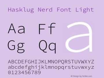 Hasklug Light Nerd Font Complete Version 2.030;PS 1.0;hotconv 16.6.51;makeotf.lib2.5.65220 Font Sample
