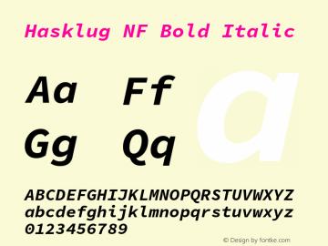 Hasklug Bold Italic Nerd Font Complete Windows Compatible Version 1.050;PS 1.0;hotconv 16.6.51;makeotf.lib2.5.65220 Font Sample