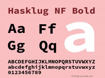Hasklug Bold Nerd Font Complete Windows Compatible Version 2.030;PS 1.0;hotconv 16.6.51;makeotf.lib2.5.65220 Font Sample
