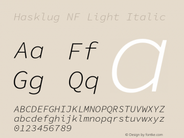 Hasklug Light Italic Nerd Font Complete Mono Windows Compatible Version 1.050;PS 1.0;hotconv 16.6.51;makeotf.lib2.5.65220 Font Sample