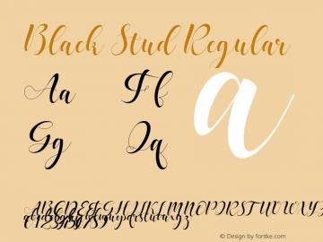 BlackStud Version 1.000图片样张