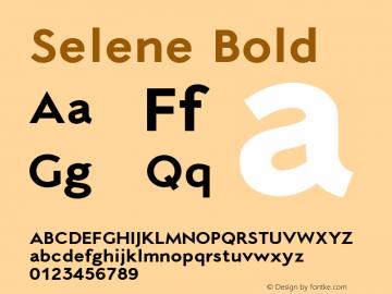 Selene-Bold 1.650图片样张