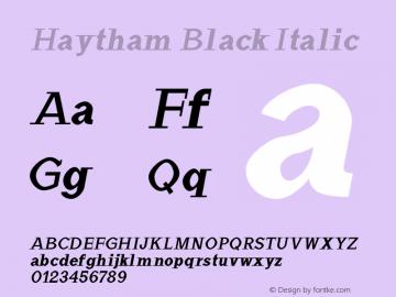 Haytham Black Italic Version 1.0图片样张