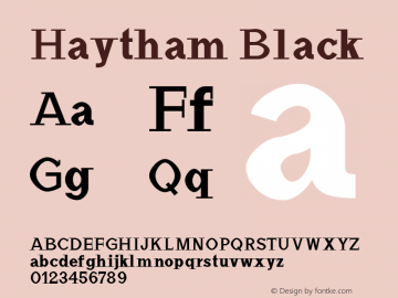 Haytham Black Version 1.0图片样张