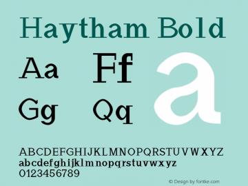 Haytham Bold Version 1.0图片样张