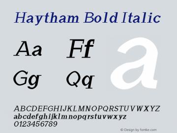 Haytham Bold Italic Version 1.0图片样张