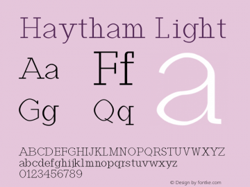 Haytham Light Version 1.0图片样张
