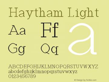 Haytham Light Version 1.0图片样张