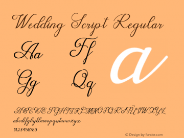 WeddingScript Version 1.000图片样张