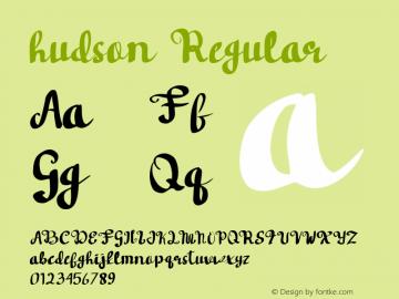 hudson Version 1.000图片样张