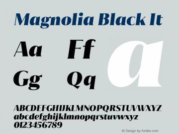 Magnolia Black It Version 1.001;PS 001.001;hotconv 1.0.88;makeotf.lib2.5.64775图片样张