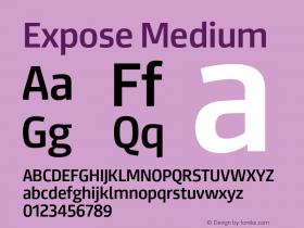 Expose-Medium Version 1.000;PS 001.000;hotconv 1.0.88;makeotf.lib2.5.64775图片样张