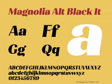 Magnolia Alt Black It Version 1.001;PS 001.001;hotconv 1.0.88;makeotf.lib2.5.64775图片样张