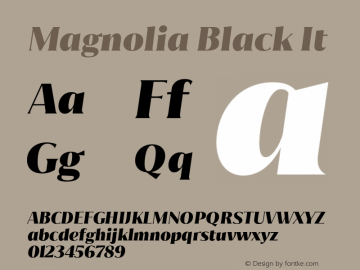 Magnolia Black It Version 1.001;PS 001.001;hotconv 1.0.88;makeotf.lib2.5.64775图片样张