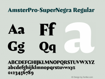 AmsterPro-SuperNegra Version 1.000;PS 001.000;hotconv 1.0.70;makeotf.lib2.5.58329;com.myfonts.easy.pampatype.amster.pro-super-negra.wfkit2.version.4mQH图片样张