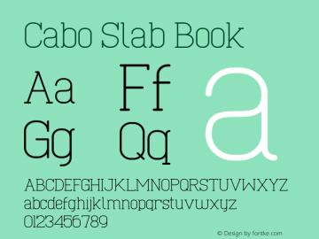 Cabo Slab Book Version 1.002;Fontself Maker 3.1.1图片样张