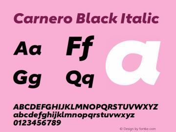 Carnero Black Italic Version 1.10图片样张
