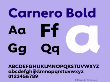 Carnero Bold Version 1.10图片样张